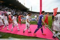 Cedric Carrasso / Marc Planus - 11.05.2013 - Bordeaux / Nancy - 36e journee Ligue 1